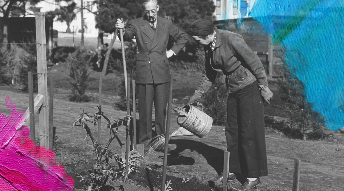 Foto: Ann Rosener (1943) Frequent watering of the Victory Garden is necessary during the early stages of growth. Gedownload en bewerkt door MijnDeugden.nl 15-02-2018. https://commons.wikimedia.org/wiki/File:Frequent_watering_of_the_Victory_Garden_is_necessary_during_the_early_stages_of_growth._-_NARA_-_196478.jpg